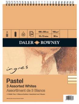 Daler-Rowney Ingres-Pastell Block ca. A3 Spiralbindung oben 3 farbig