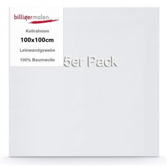Keilrahmen 3D 100 x 100 5er Pack