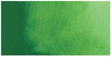 Kuretake ZIG GANSAI TAMBI AQUARELLFARBE 053 Sap Green / Mid Green