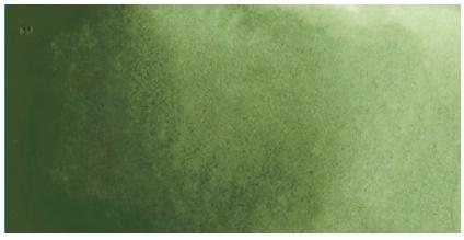 Kuretake ZIG GANSAI TAMBI AQUARELLFARBE 054 Olive Green