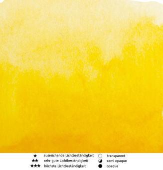 15 Indisch Gelb Renesans Aquarellfarbe Intense Water 15 ml