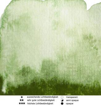 45 Grünoliv Renesans Aquarellfarbe Intense Water 15 ml
