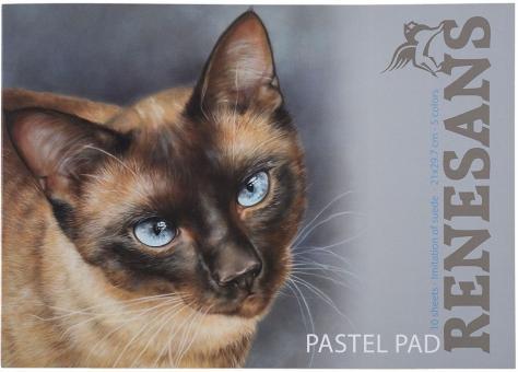 Renesans / Pastell Block A4 - 10 Blatt Samtpapier mit 5 Farben